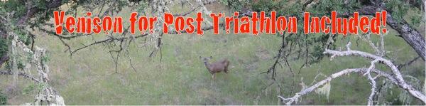 Deer 2 1